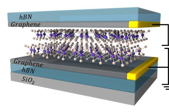 , Pushing magnetic materials to the atomically-thin limit