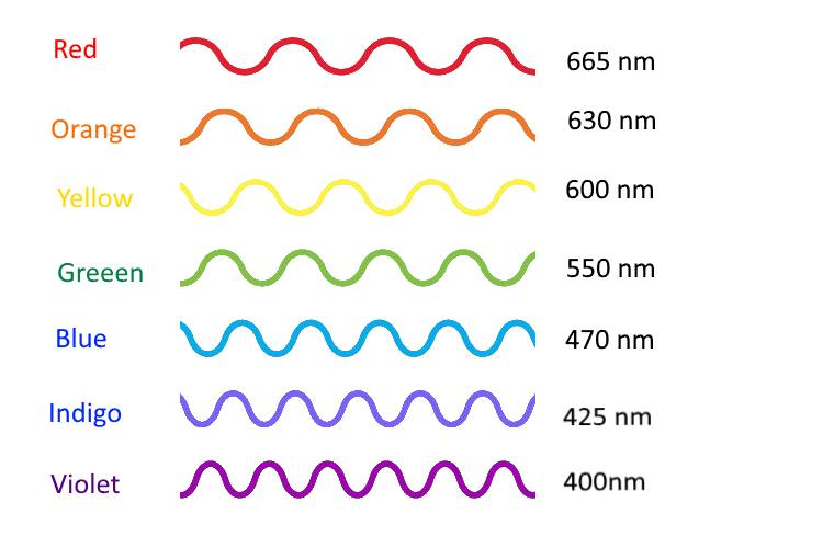 wavelengths and colors of the spectrum