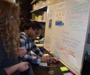 Students from TAF Academy build organize solar cells using dyes from berries