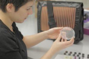 Luscombe Lab