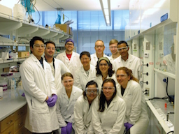 , Research Update: Joining links for more sustainable solar energy