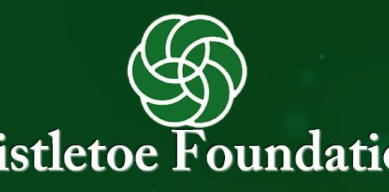 , Three clean energy postdoctoral fellows awarded Mistletoe Research Fellowships