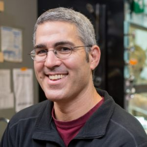 Headshot of chemistry professor Daniel Gamelin